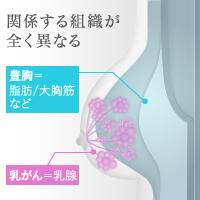 噂の関係1:豊胸手術すると乳がんになる?