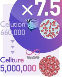 コンデンスリッチ豊胸:セリューション豊胸とセルチャー豊胸の幹細胞量の違い